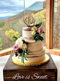 Cakes by Bakin Bishop, Pigeon Forge, TN, wedding cake in front of mountain view