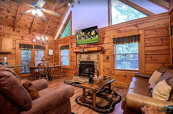 Natures Grace Retreat Handicap accessible cabin in Pigeon Forge, living room with fireplace view