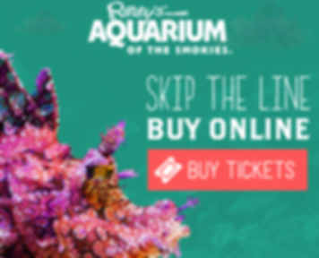Ripley's Aquarium Tickets