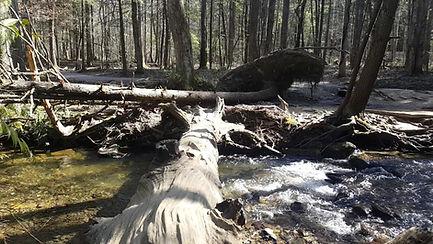 video of Cataract Falls Trail Gatlinburg TN, video of creek