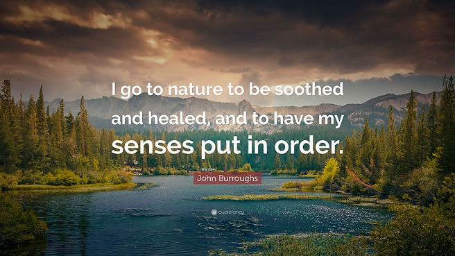 "Mountain Nature scene with quote ""I go to nature to be soothed and healed, and to have my senses put order"""