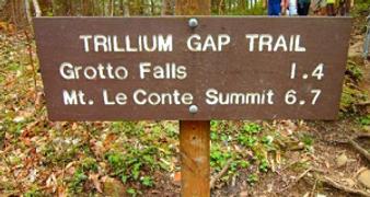 Grotto Falls sign