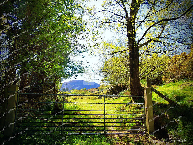 The 'Gate' - Mourne Mountains - Ireland