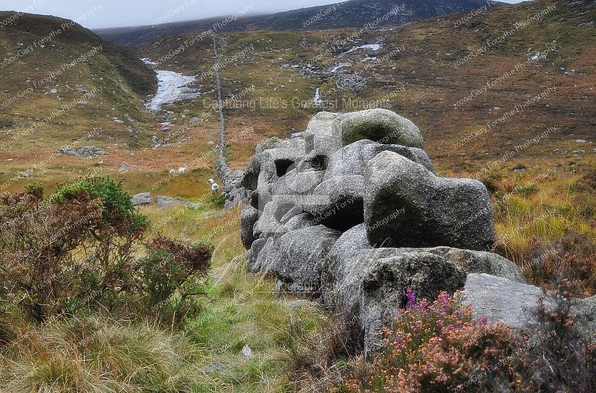 Dry Stone Wall - Ireland