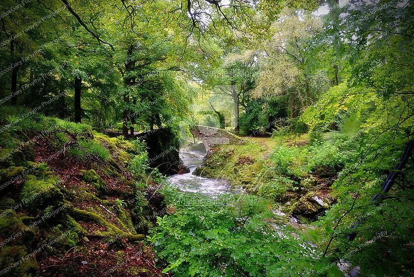 'Foley's' Fairy Bridge - Ireland