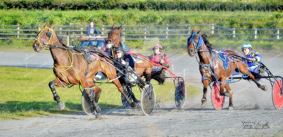 Into the Last Bend - Harness Racing Ireland
