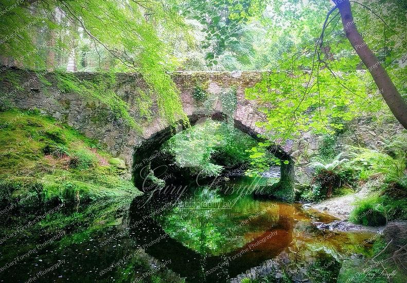 'Tollymore' Bridge - Ireland