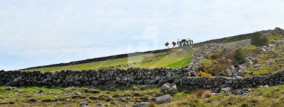 Mountain Farming - 'Mourne' Mountains - Ireland
