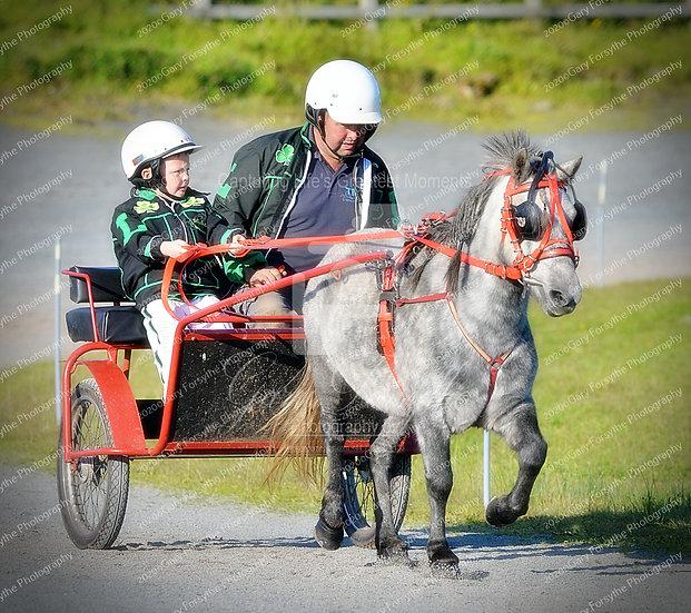 """Hold on tight Da !!! - Harness Racing Ireland"