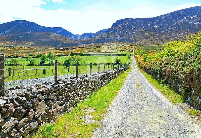 'Slieve Meelmore' to the 'Hares Gap' - Ireland