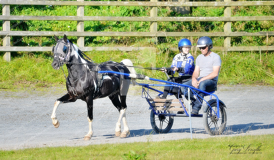 Learning To Drive - Harness Racing Ireland