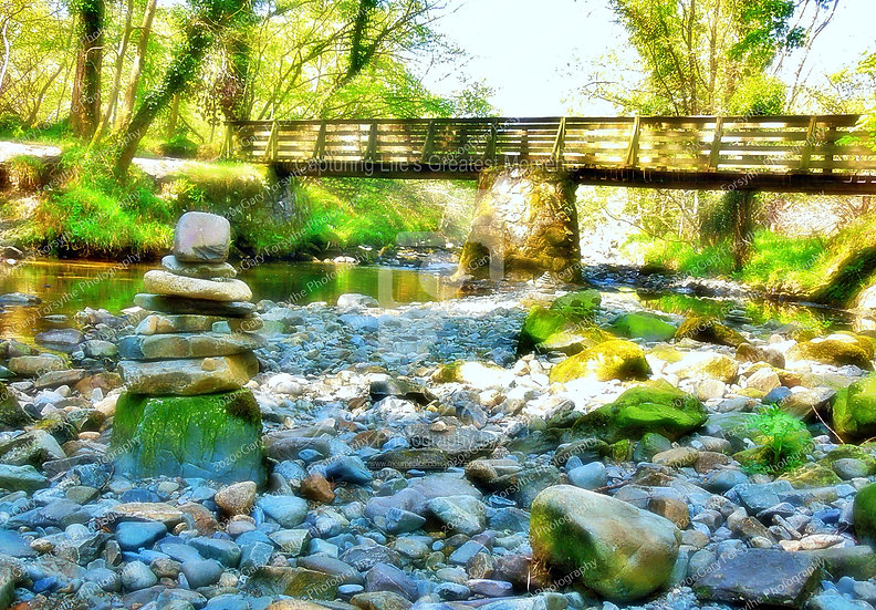 'Parnell's' Wooden Bridge 'Tollymore' - Ireland