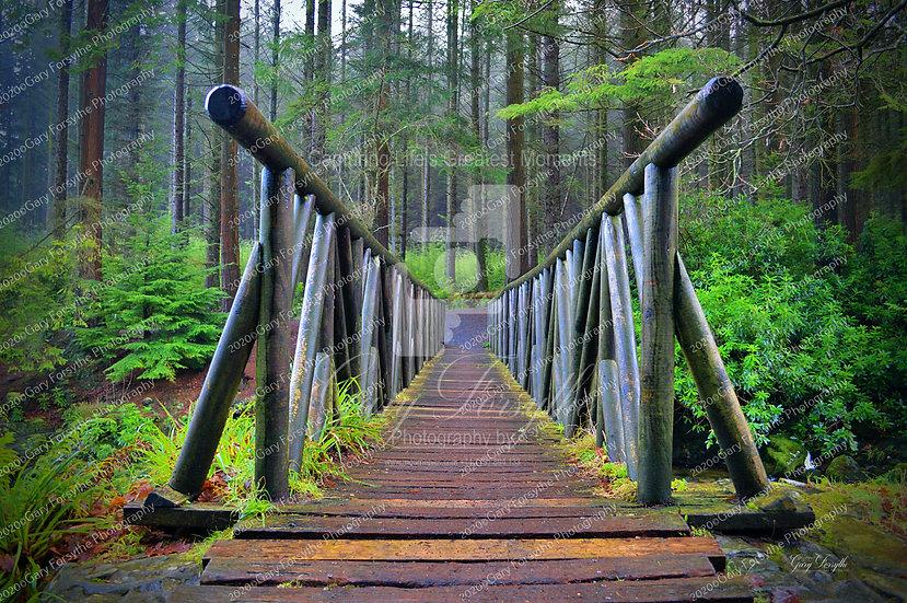 The Foot Bridge 'Tollymore' - Ireland