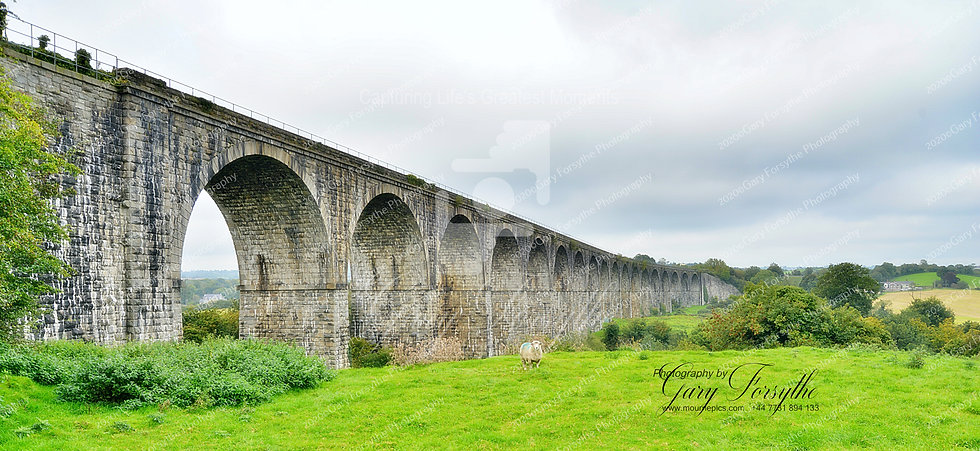 'Wooly Jumper' at 'Craigmore' Viaduct - Ireland