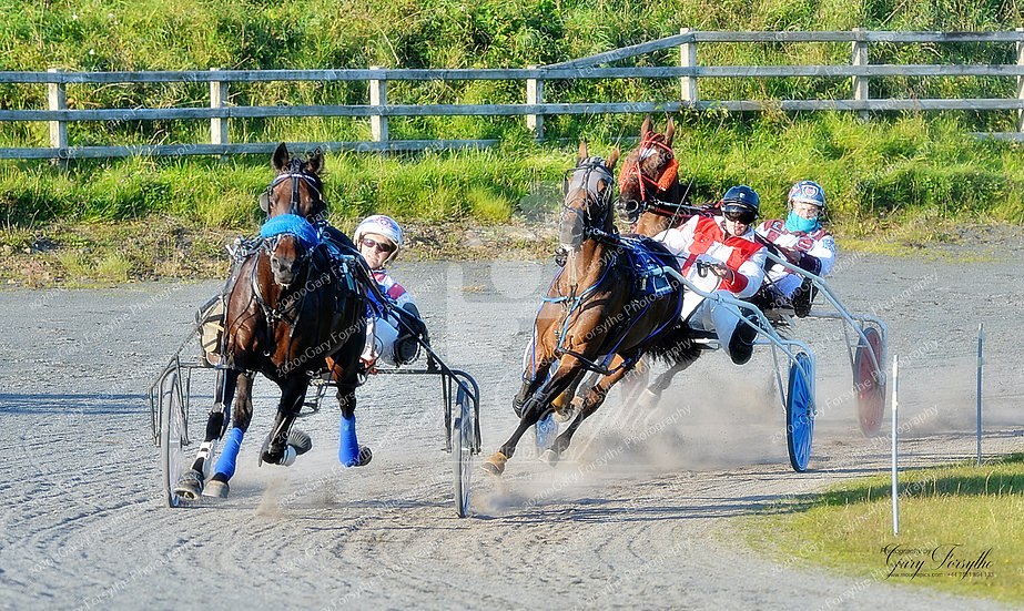 Into the Bends - Harness Racing Ireland