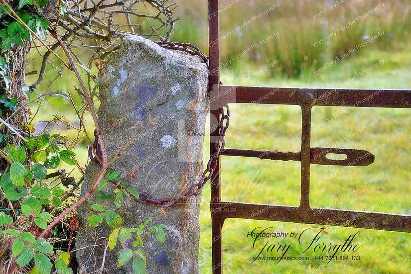 Old Irish Field Gate 'Closer Bar' - Ireland