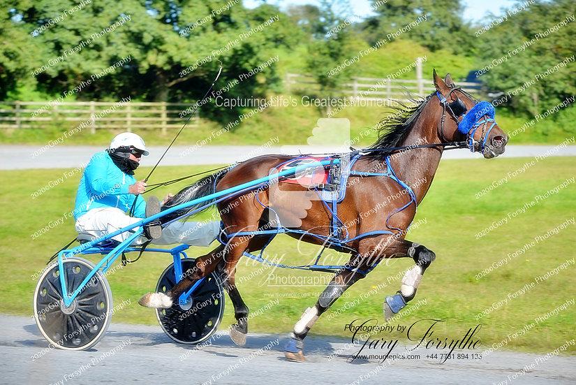 Harness racing - Ireland