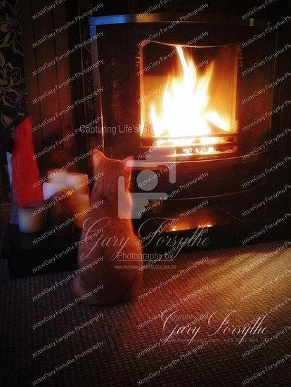 Magic in the Flames - 'Rio' - Ireland
