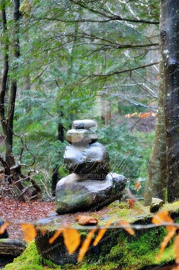 Forest Message - Ireland