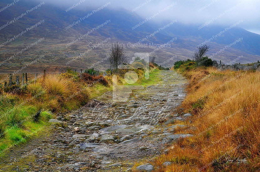 The Road to 'Shannagh' Lough - Ireland