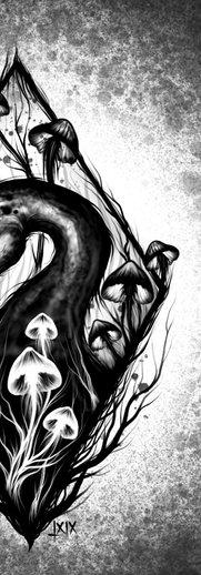 """Black swan in the moor"""