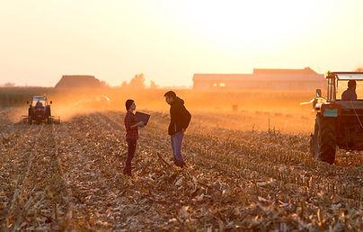 champs-agriculteur-plan_web.jpg