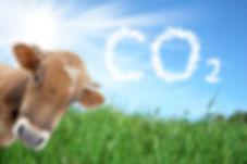 paysageCO2+vache_biogaz.jpg