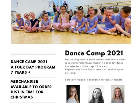 Term 4 Newsletter 2020