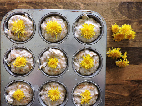 dandelion flower + blood orange muffins