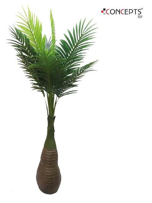 Palmeira - 190cm