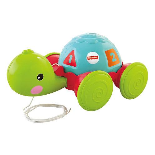 Andando coma tartaruga 12-36M Y8652 - FISHER PRICE