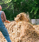 Man with Hay