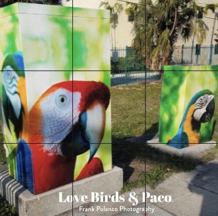 Pompano Beach Florida Public Art