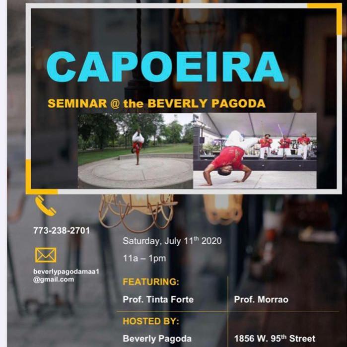 Capoeira Martial Arts Seminar
