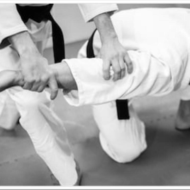 Aikido Yoshinkan Self-Defense Seminar
