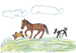 Hevonen.jpg