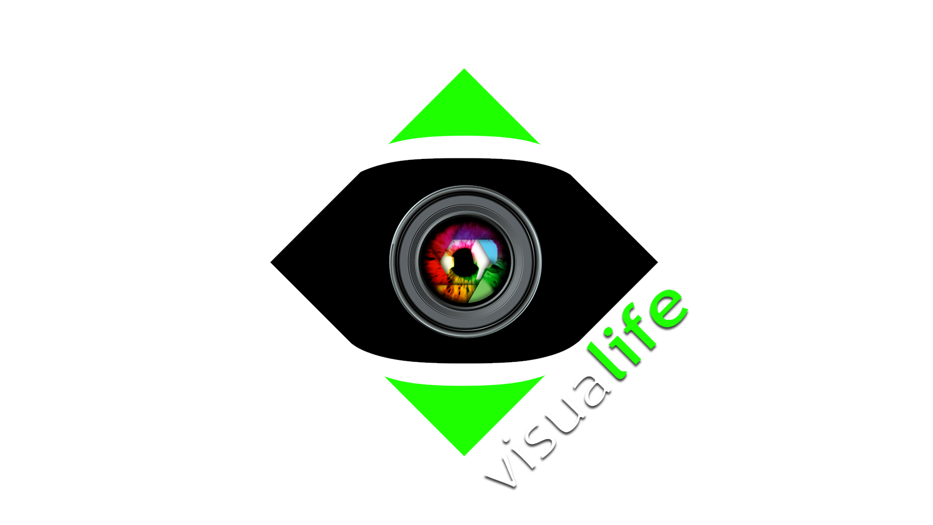 logo visualife copia
