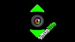 logo visualife copia