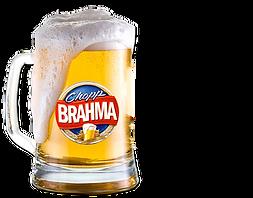 Shop-Brahma.png