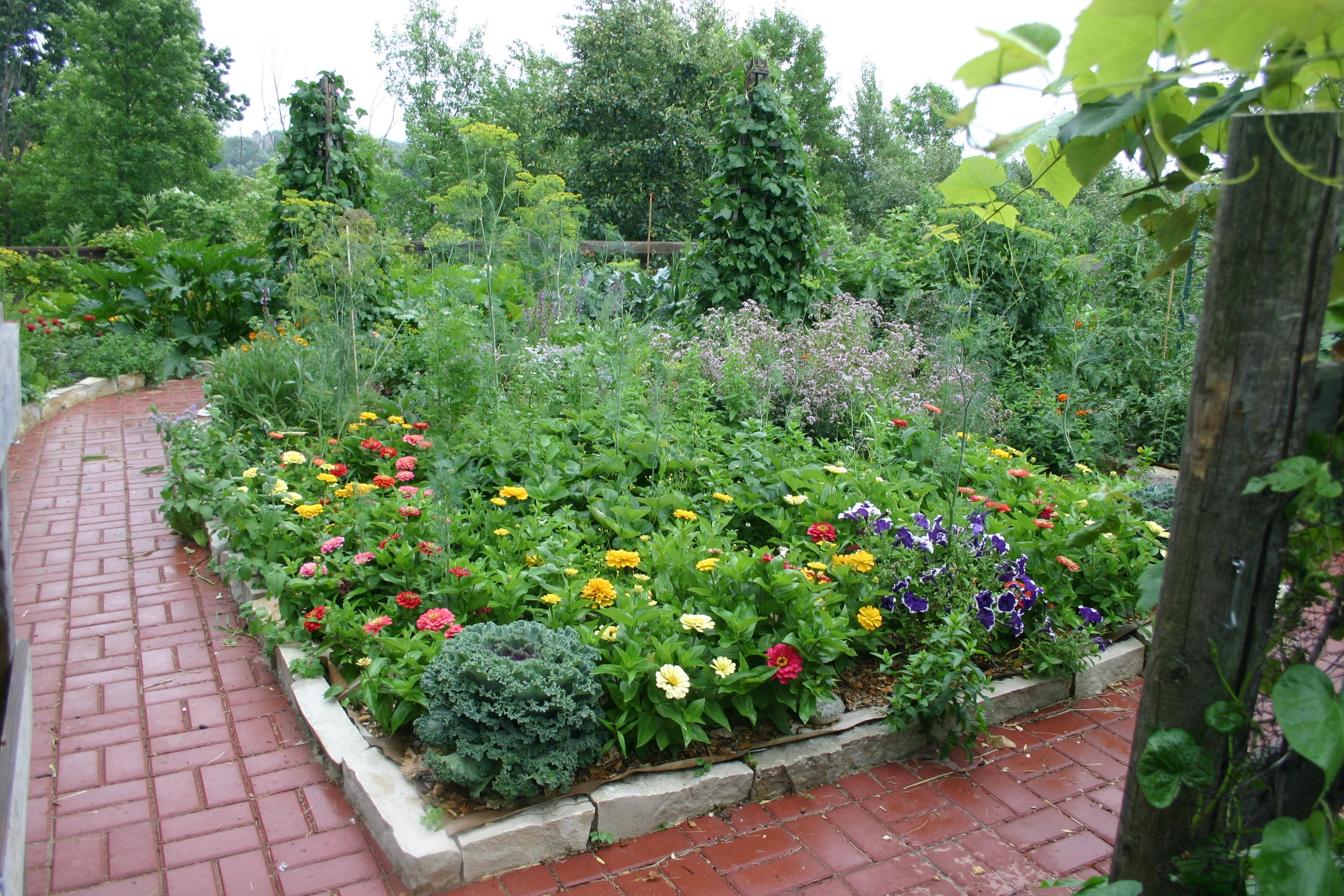 Organic garden/orchard