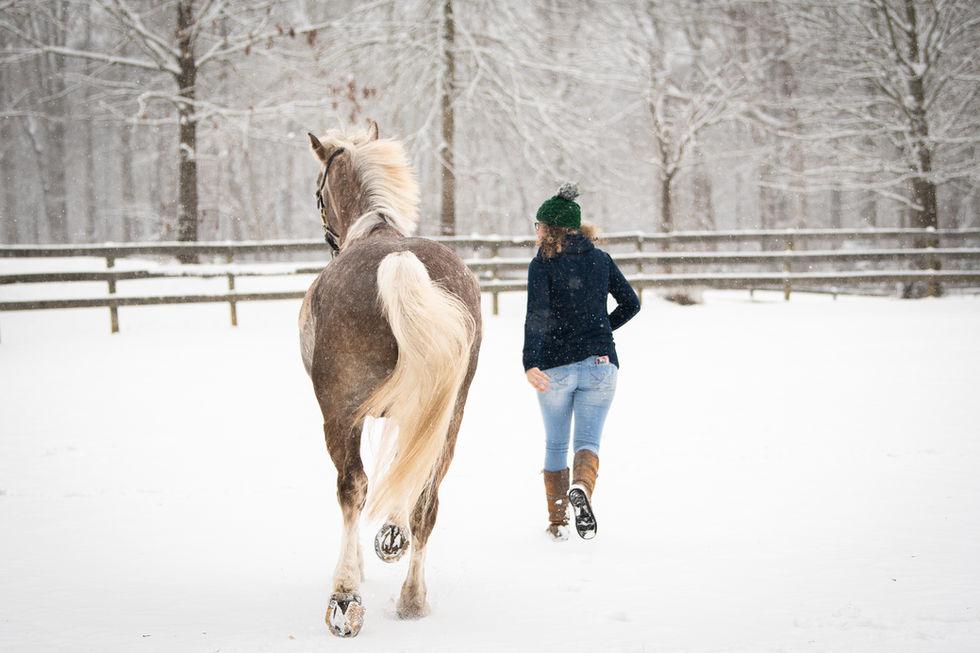 snowy citation-73.jpg