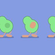 02. Insta Avocado.mp4