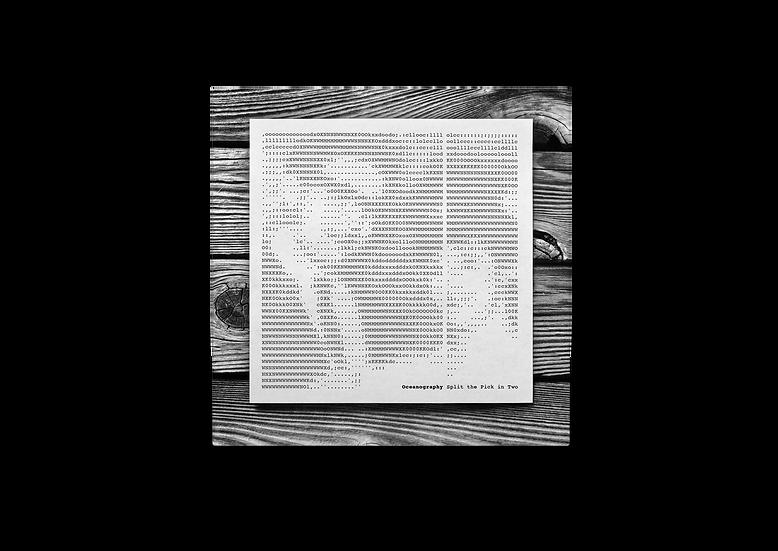 Split the Pick in Two Single - Digital Download