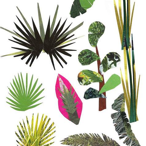 Jungle elements