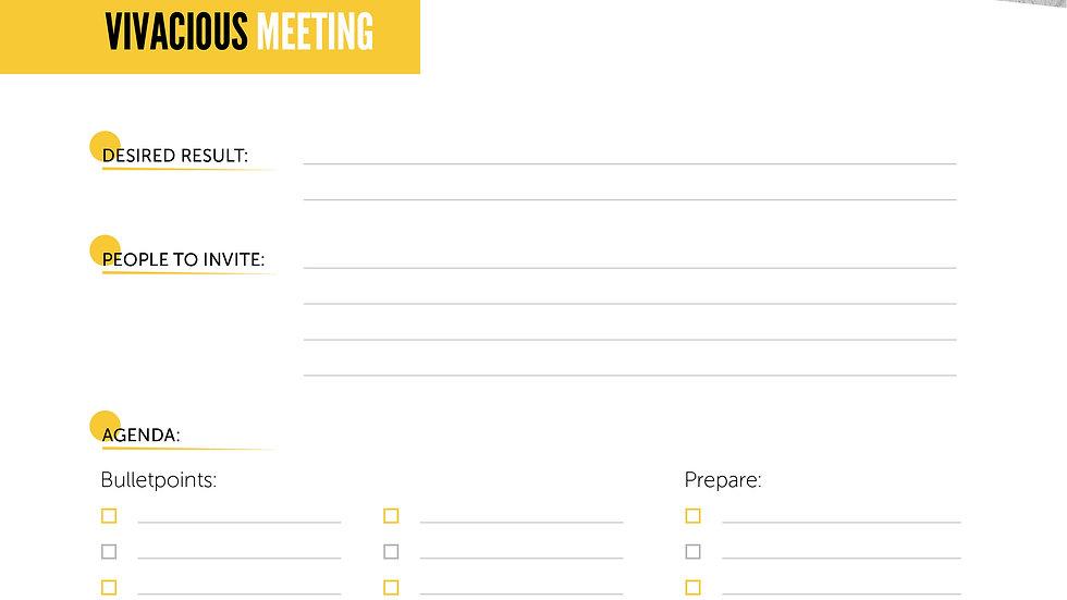 Worksheet - The Vivacious Meeting