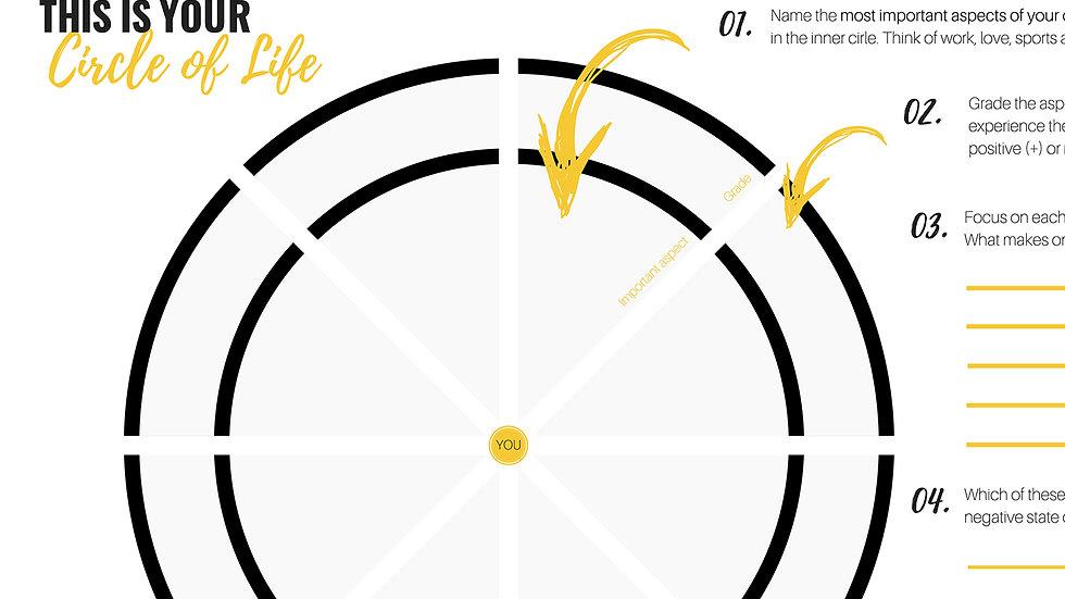Worksheet - The Circle of Life
