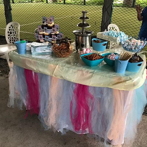 Chocolate Fountain Buffet setup: Pink & Blue