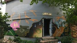 Camouflage/Latitude