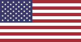 Screenshot_2021-01-29 Flag of the United