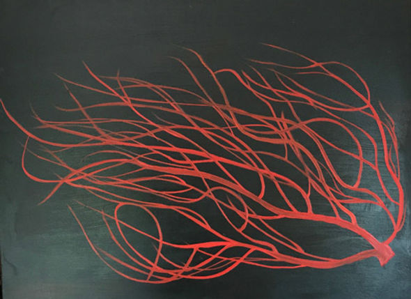 Red Coral on black.jpg